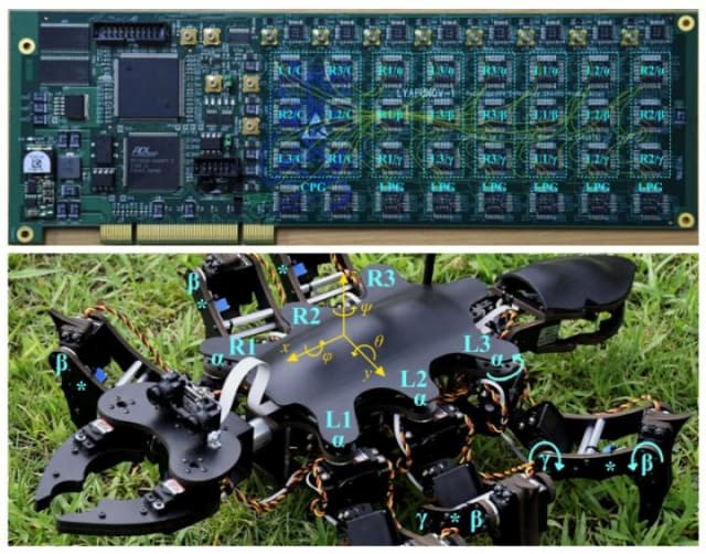 Circuit of the two-level controller (top) that makes the insect-like movements of the new robot (bottom) possible. (Image courtesy of IEEE and the Tokyo Institute of Technology.)