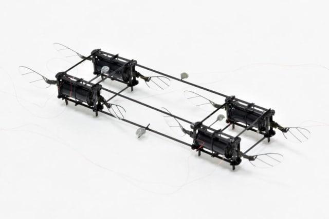 four-actuator, eight-wing soft RoboBee (Image courtesy of The Harvard Microrobotics Lab/Harvard SEAS.)