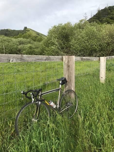 Splendor in the grass. The author's bike rests during a recent trip through Marin County, Calif. The diamond-shapedbike frame with tubular construction may be the optimum shape. Made of titanium, this bike has withstood a hundred thousand miles. It will, without a doubt, outlast and outlive its owner.