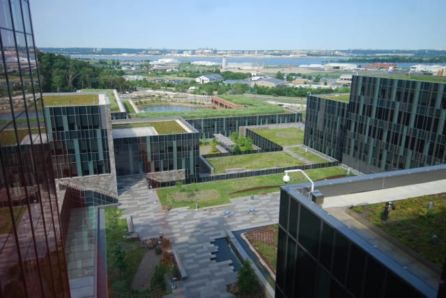The U.S. Coast Guard headquarters in Washington, D.C., has a thriving green roof. (Image courtesy of U.S. General Services Administration.)