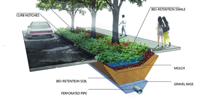 A diagram of a bioswale used to catch stormwater. (Image courtesy of Lifestyle Magazine.)