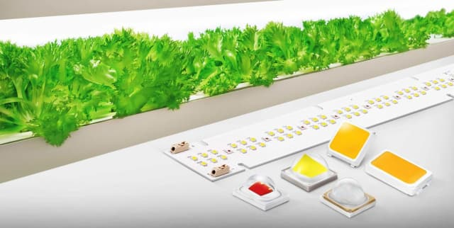 Horticulture LEDs. (Image courtesy of Samsung.)