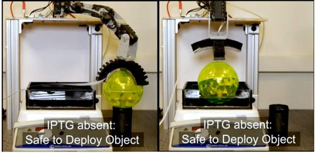 The gripper deposits a ball in the water bath after determining that IPTG is not present. In this experiment, the robot took 10 hours to make its decision. (Image courtesy of UC Davis and Justus et al.)