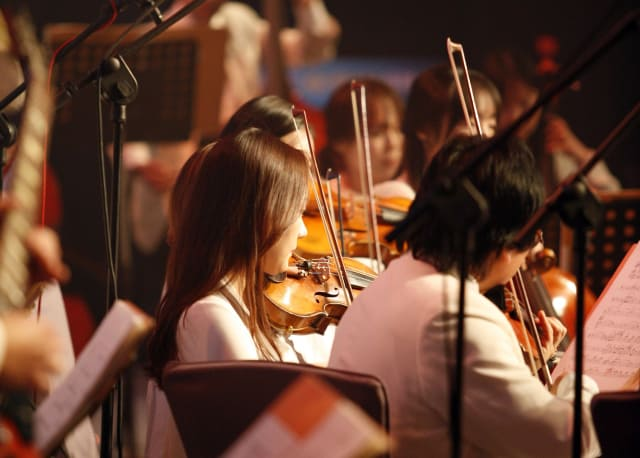 When it comes to casting an orchestra, all that matter is how well an instrument is played. (Image courtesy of Pixabay.)