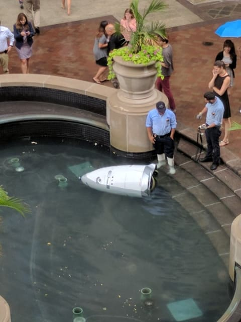 ecurity robot found floating in pool in DC office building. Picture by Bilal Farooqui from his Twitter account.