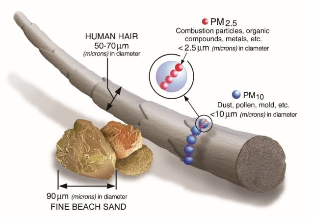 Particulate matter (PM) ranges from 2.5 to 10 microns in size, much smaller than a human hair or grain of sand. (Image courtesy of EPA.)