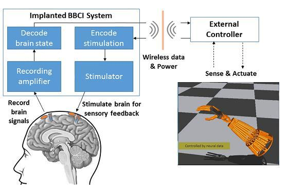 The UW study is based on the concept of closed-loop 'bi-directional brain-computer interfaces' (BBCIs) being developed at the CSNE that can both record from and stimulate the nervous system. They would also allow the brain to directly control prosthetics or other external devices to enhance movement or reanimate paralyzed limbs. (Image courtesy of Center for Sensorimotor Neural Engineering.)