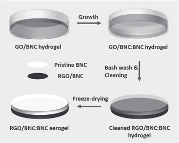 An illustration of the process used to obtain the bilayered structure composed of BNC and RGO. See the full paper for details. (Image courtesy of Advanced Materials.)