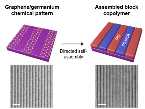 The initial outline (left) was made with a layer of one-atom-thick graphene on a germanium wafer. The block copolymers (PS-b-PMMA) followed this outline and self-assembled into the desired patterns (right). The scanning electron micrograph images at bottom contrast the before-and-after resolution, with the white scale bars representing 200 nm. (Image courtesy of Scientific Reports).