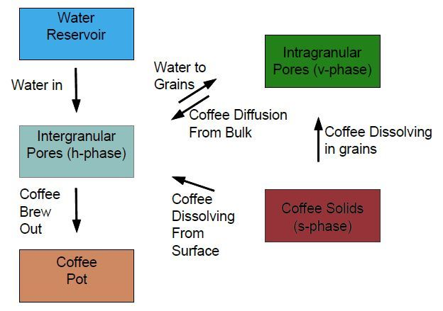 """Transfers included in the coffee extraction model (reproduced from Moroney et al, """"Modelling of coffee extraction during brewing using multiscale methods: An experimentally validated model,"""" The diagram shows the transfers of water and coffee which are described by the coffee extraction model presented in the published research. (Image courtesy of Kevin M. Moroney.)"""