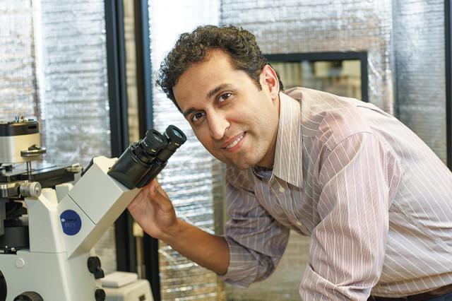 Dr. Majid