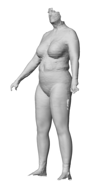 An imperfect scan. (Image courtesy of Body Labs.)