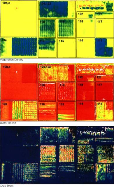 The same fields though different spectra show a wealth of different conditions not available to the human eye. (Image courtesy of NASA.)