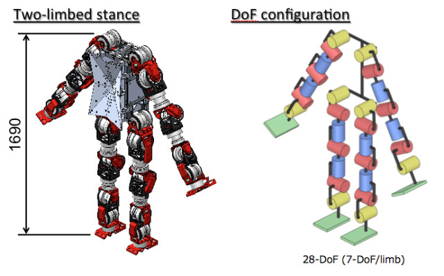 The various actuator units that make up the WAREC-1's limbs give the robot a total of 28 degrees of freedom. (Image courtesy of Kenji Hashimoto Lab and Atsuo Takanishi Lab, Waseda University.)