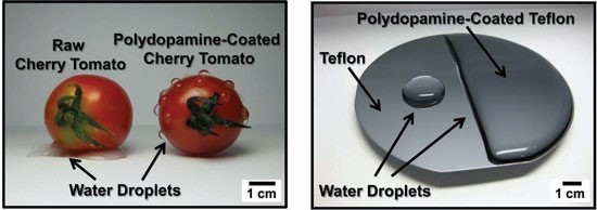 Engineers Seek to Improve Teflon's Wear Resistance and