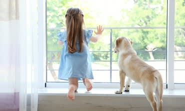 The best way to clean your windows if you have kids