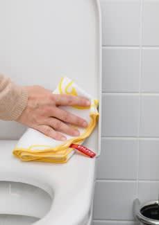 Toilet Miracle