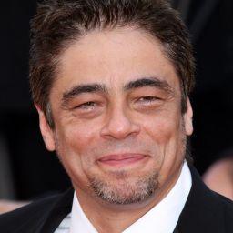 班尼斯奧狄多路 Benicio del Toro