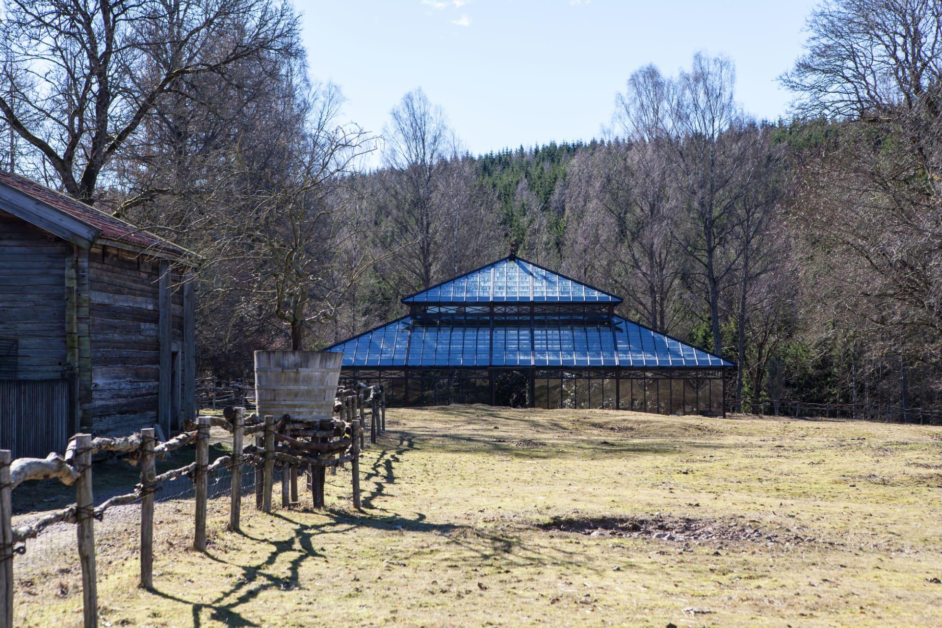 Som en hägring ligger kameliahuset med skogens och gårdens djur som närmaste grannar.