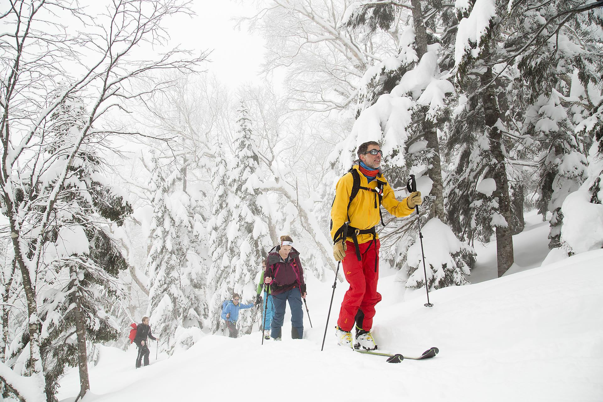 Bergsguiden Christian Edelstam guidar gruppen upp genom snötyngda träd.