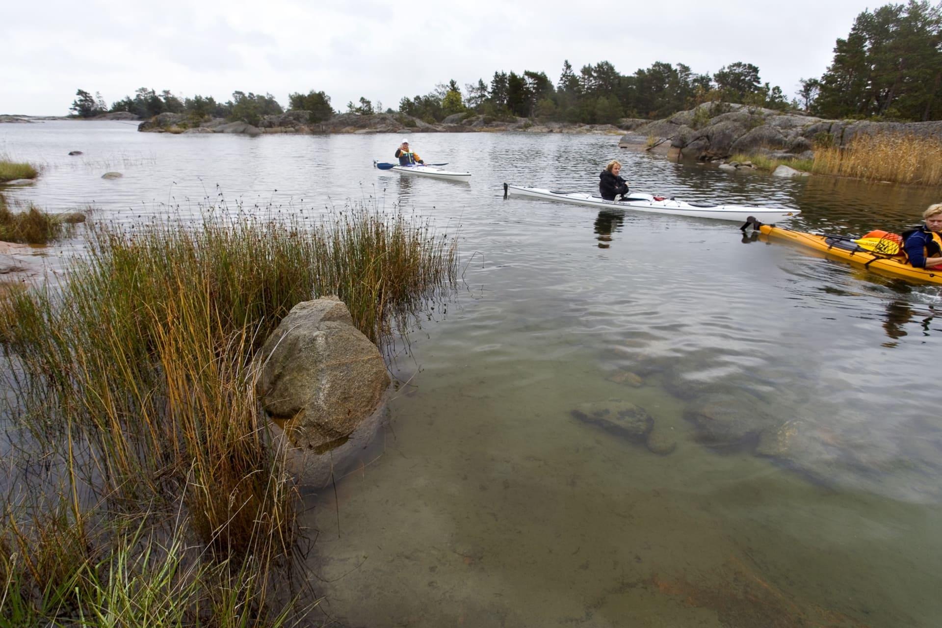 Söder om Gräsö är skärgården trång och full av smala grunda sund. Här kommer bara kajaker fram, inte andra båtar.