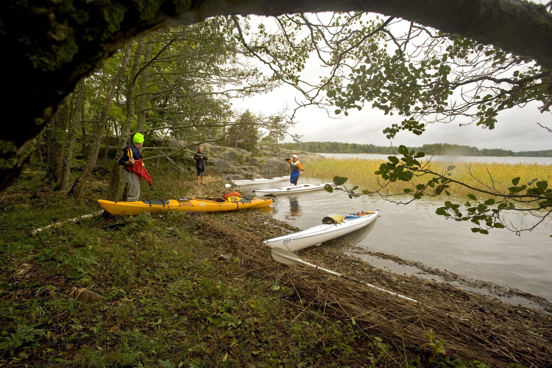Låga strandlinjer och mycket växtlighet är typiskt för Roslagen. Tältplatserna är inte alltid de bästa utkiksplatserna, men träd skyddar mot vind.