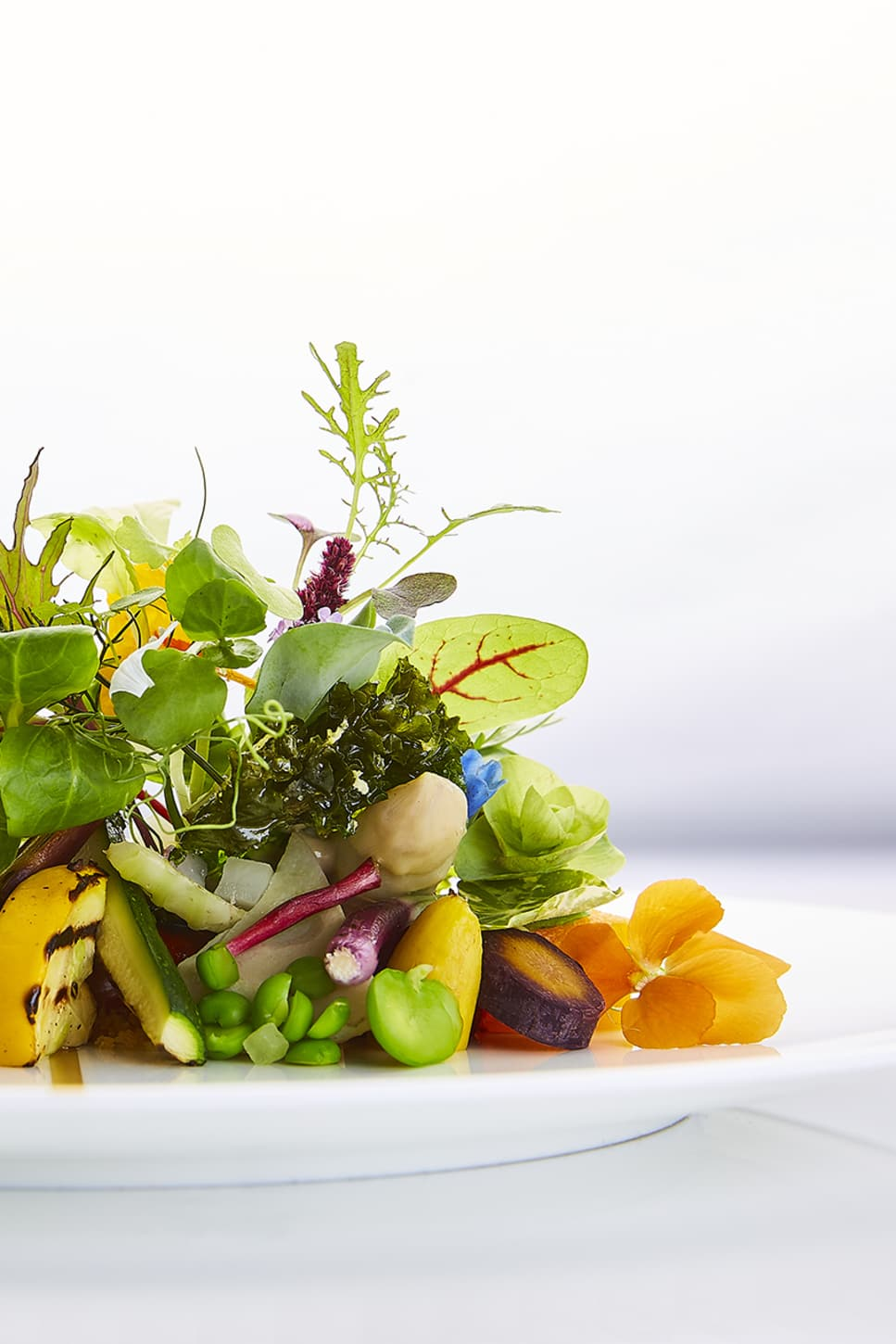 Salad with scallop (© Frasershot Studios).