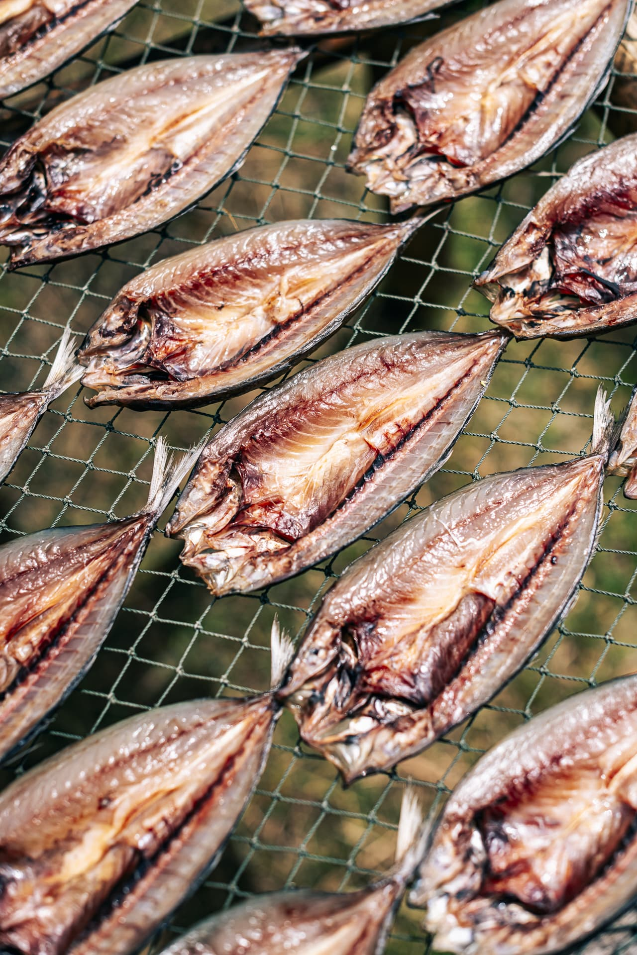 Fish under the drying process in the sun at Ban Thale Noi, in the Rayong province.