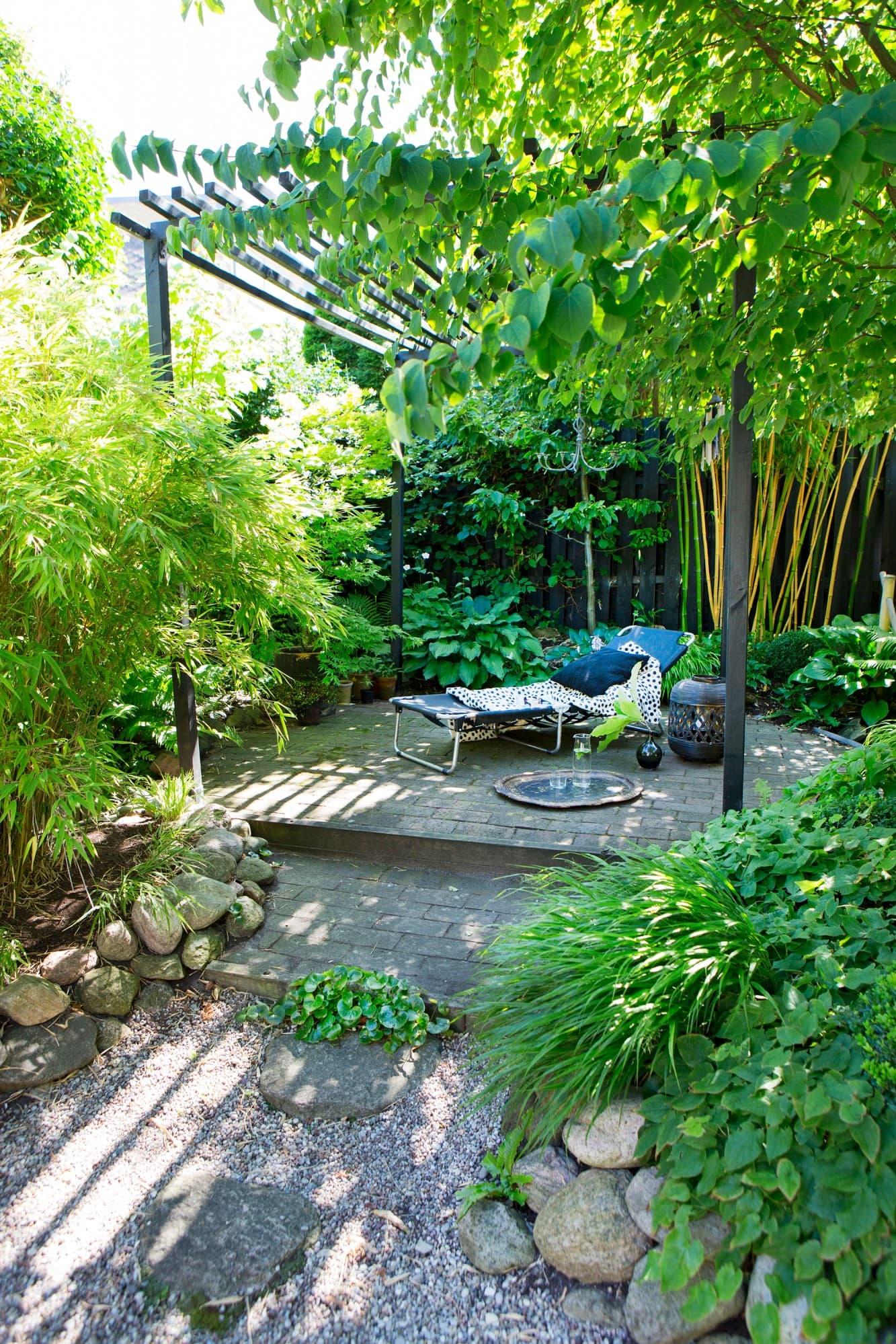 En trappa upp finns en stenlagd uteplats som är omringad av olika sorters bambu.