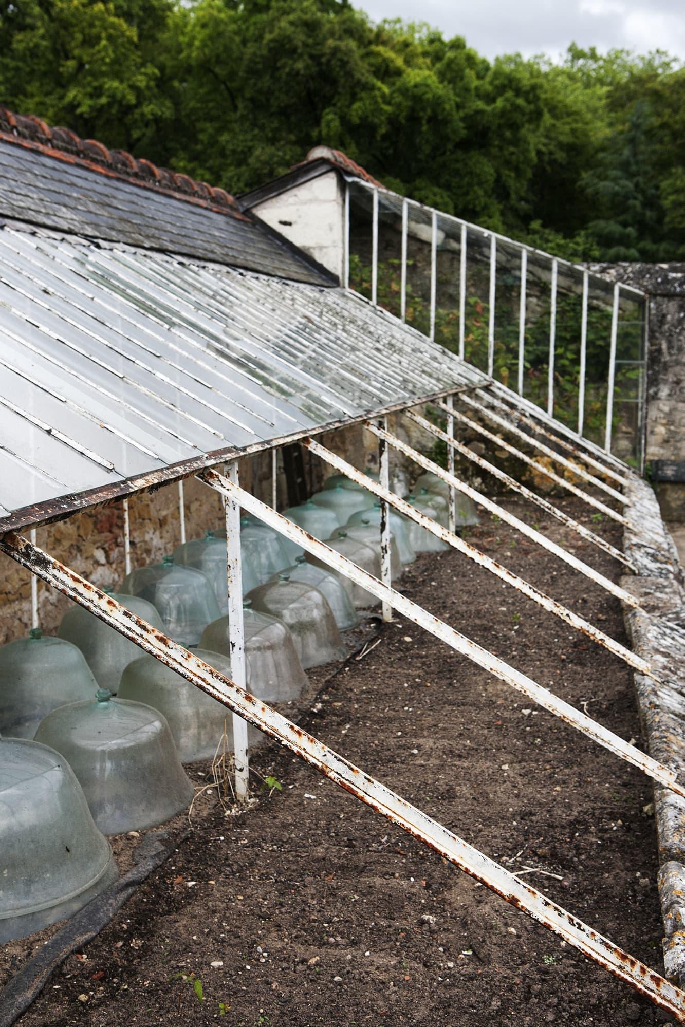 I de glasförsedda jordbäddarna kan man börja driva upp plantor tidigt på säsongen.