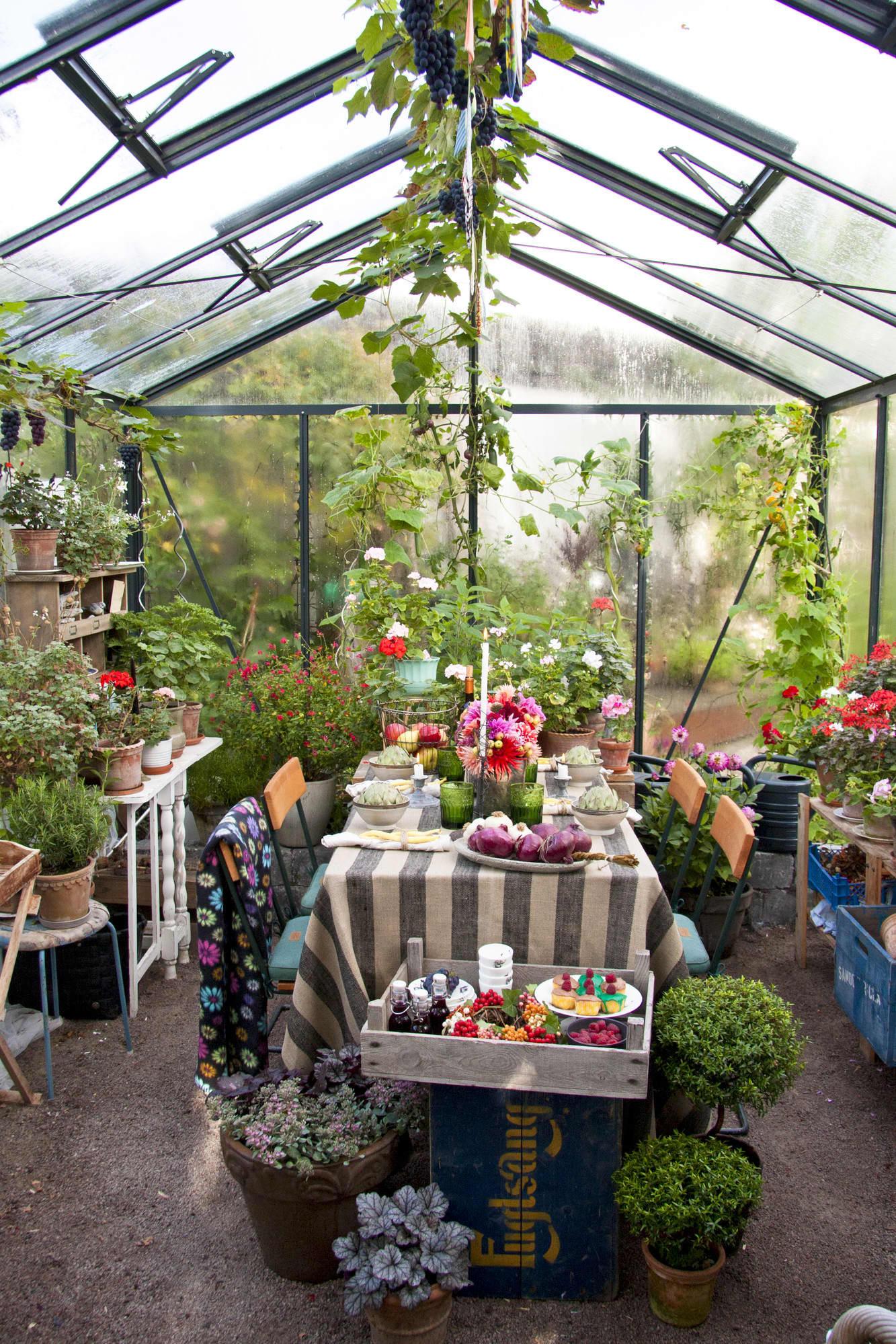 Fullt hus. Skörda allt vad trädgården har av blommor, frukt och grönsaker samt ställ in de vackraste trädgårdskrukorna. Sen är det bara att bjuda in vännerna till skördefest i växthuset.