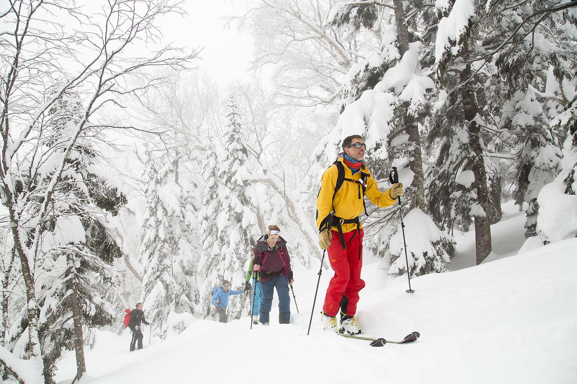 Mountain guide Christian Edelstam guides the group up through snow-laden trees.