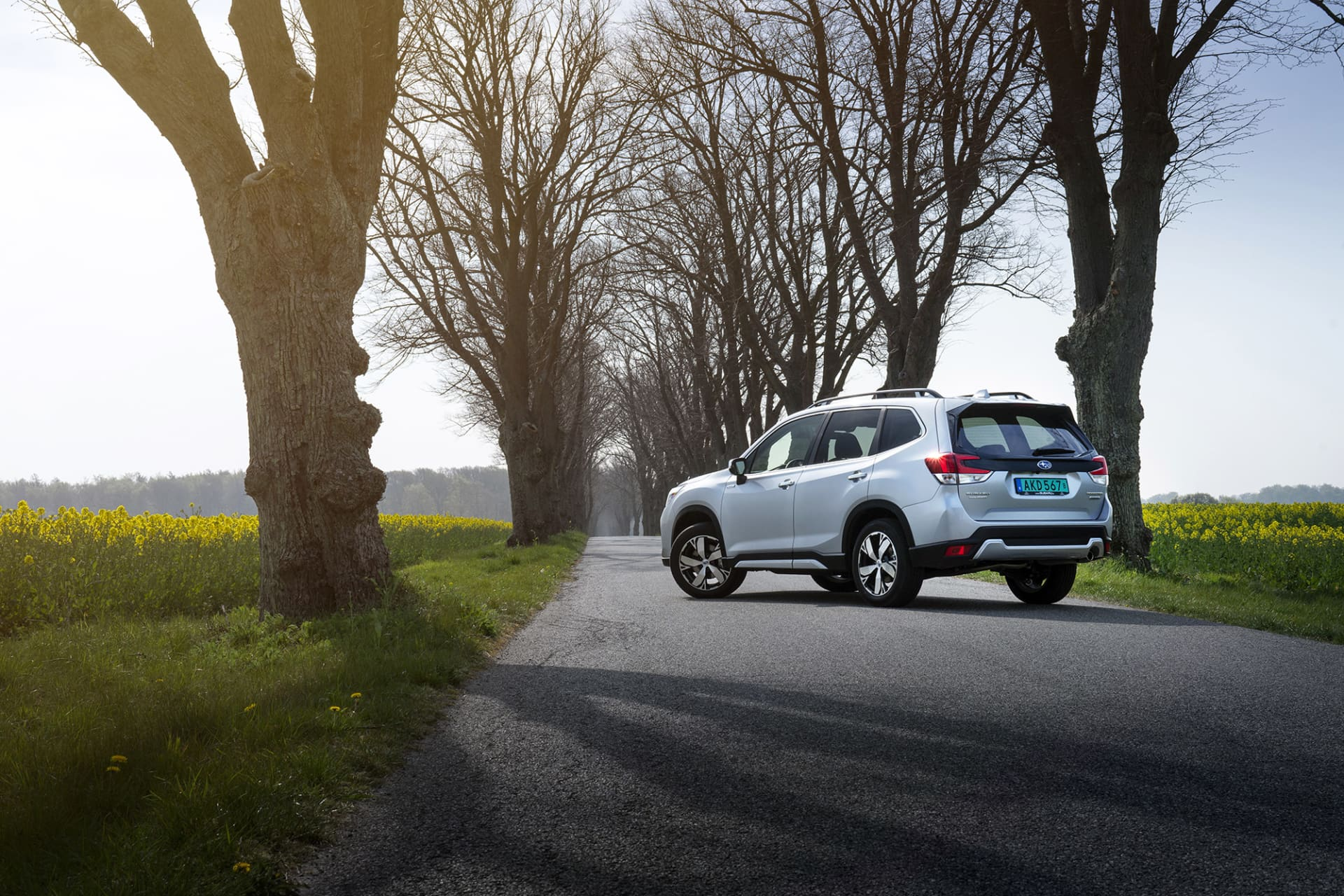 Storleksmässigt har nya Subaru Forester e-Boxer växt en aning sen sin föregångare. Det märks framförallt i baksätet där dom tre extra centimetrarna som lagts till på axelavståndet.