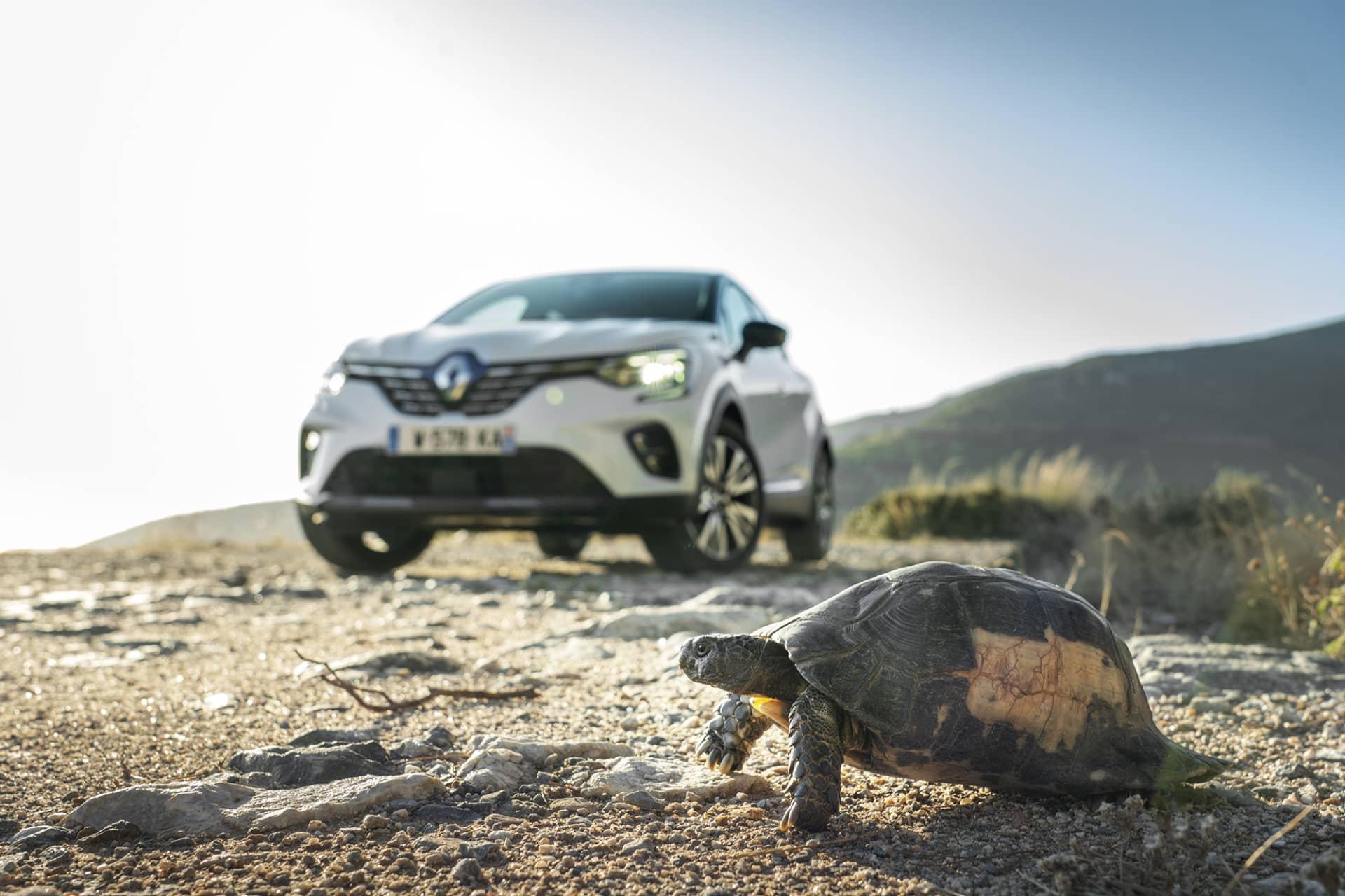 Provkörningen i Grekland utanför Aten blev avbruten då en Grekisk landsköldpadda skulle korsa vägen. Till skillnad från bilen var det här ingen purfärsk krabat utan säkerligen äldre än undertecknande.