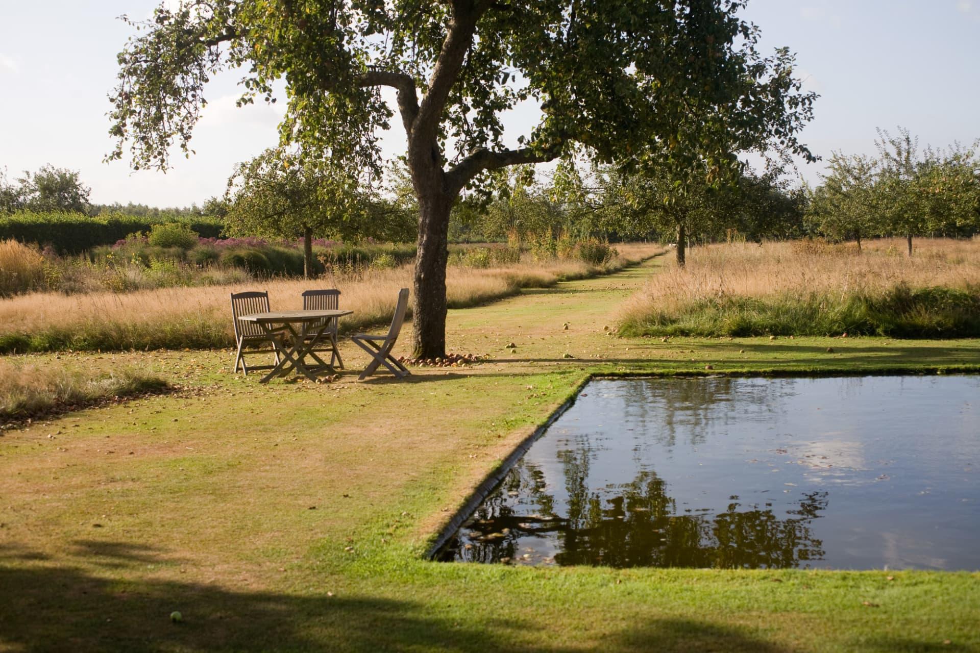 Dammen ger en extra dimension med sitt vattenblänk. Torrt gräs mot vått vatten.