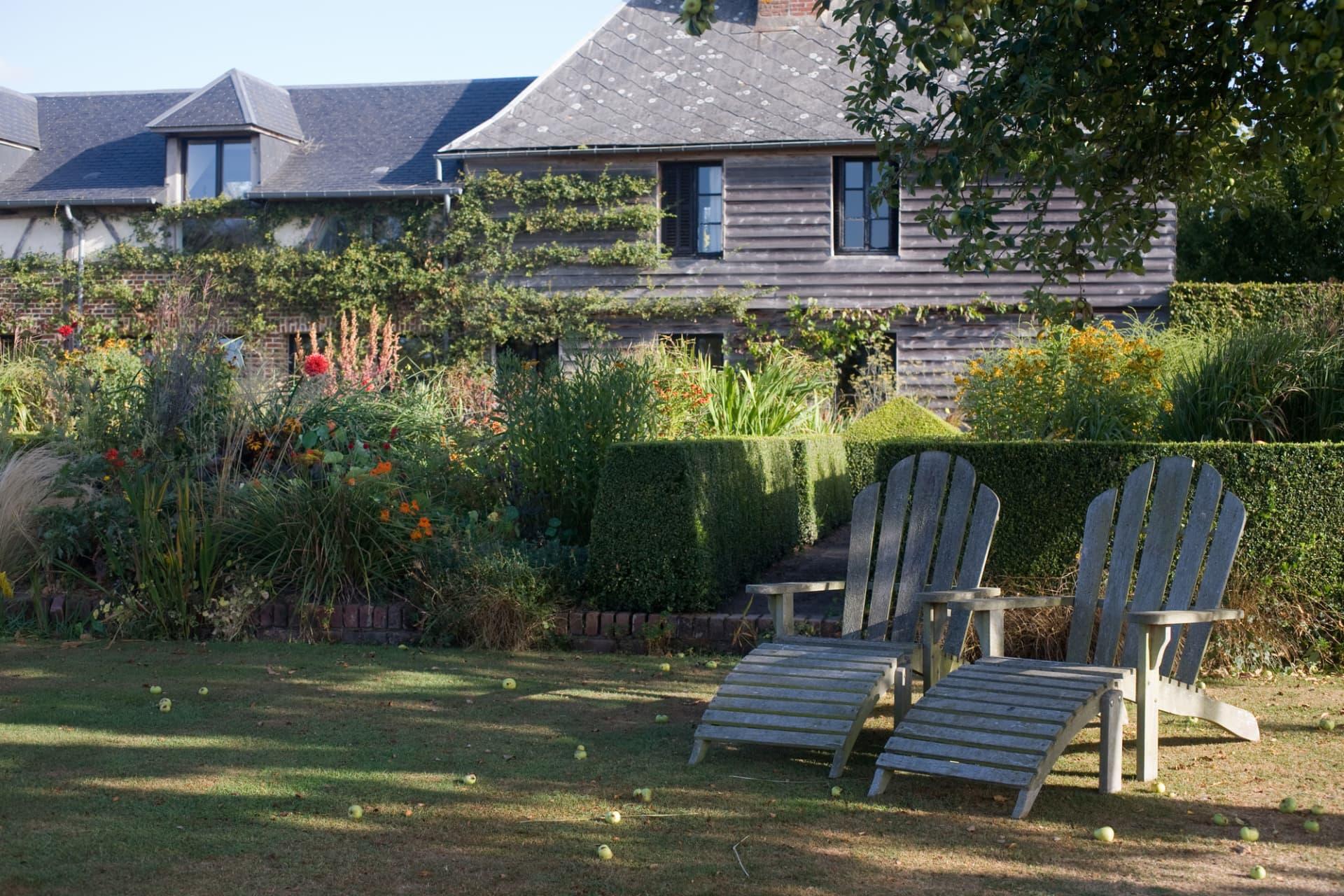 Vilt och vacker i sommaträdgården framför bostadshuset.