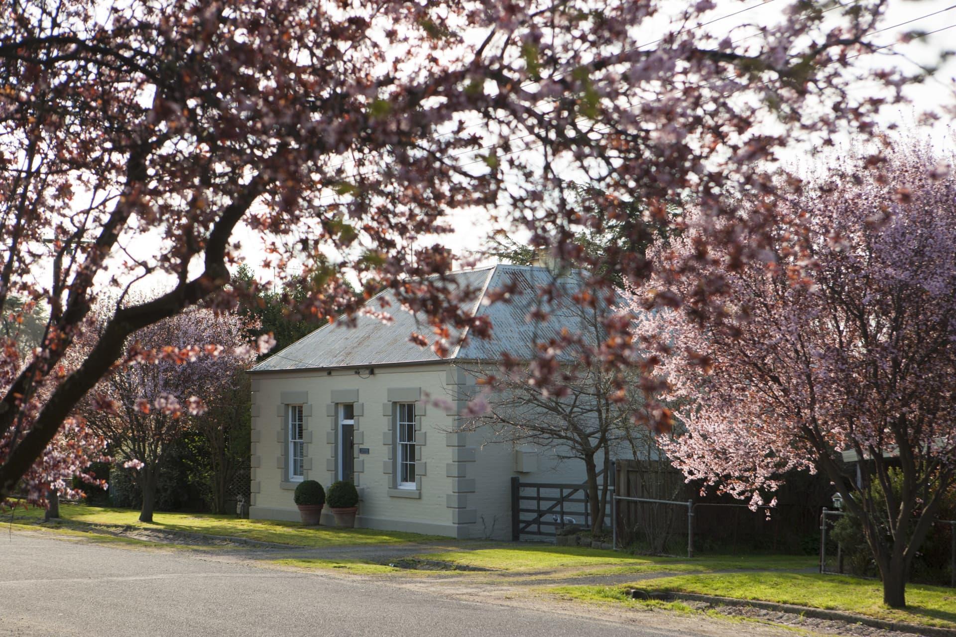 Meadowbank in spring.