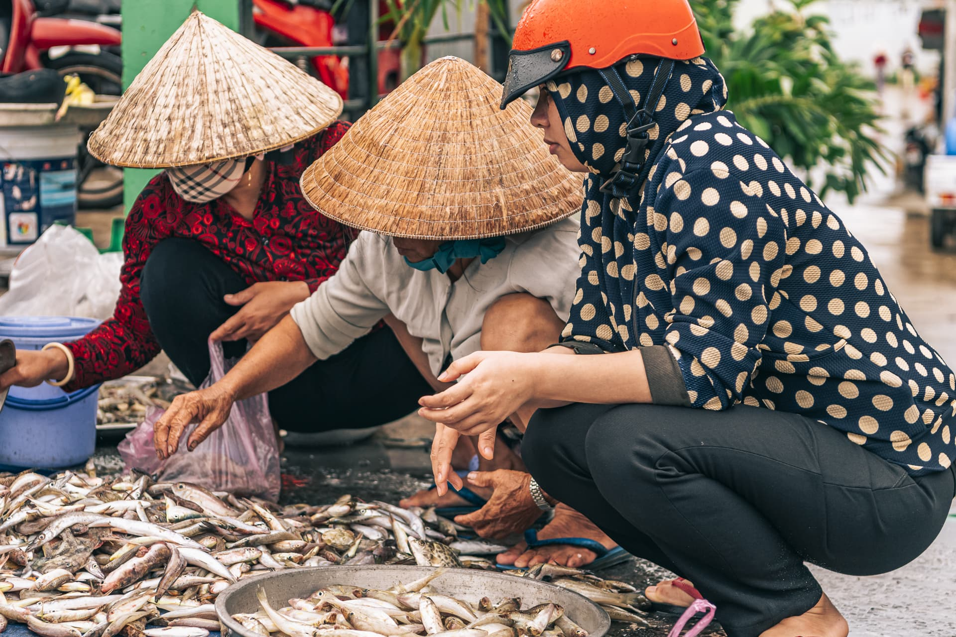 Traders sorting through freshly caught fish at the Cau Sau market.