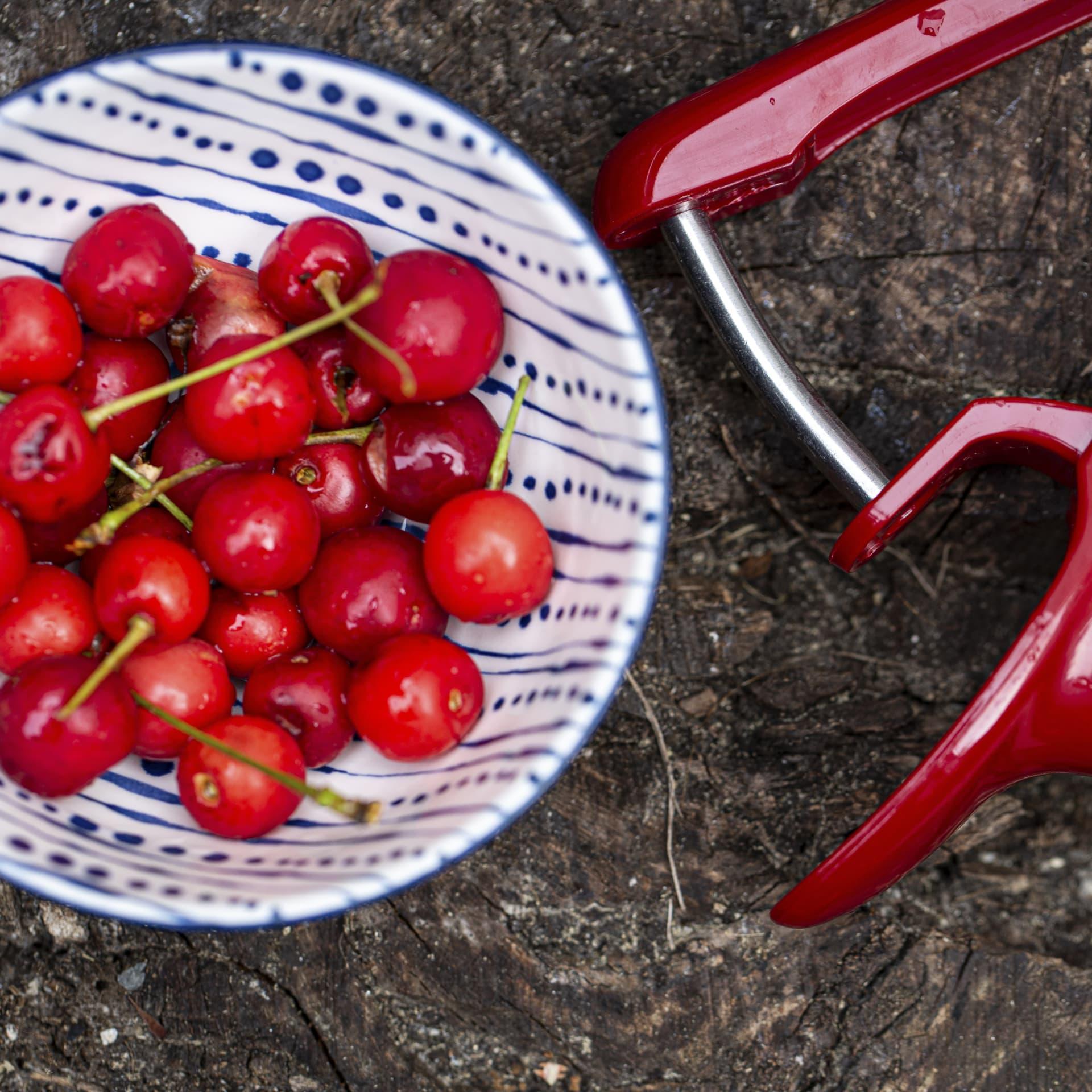 Pitting sour cherries.