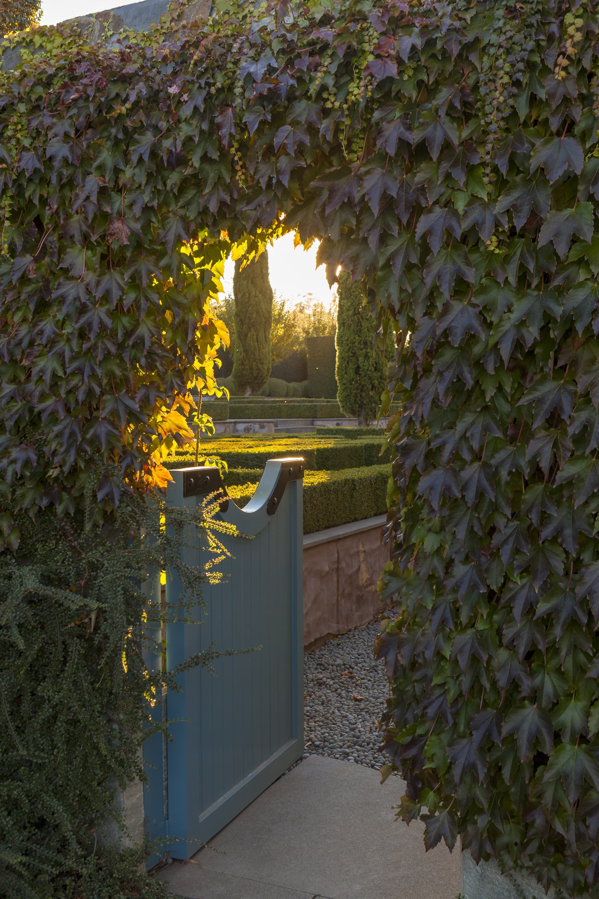 Gate to the parterre garden. The late afternoon light is quite magical at Stonefields, it's the best time to explore the garden.