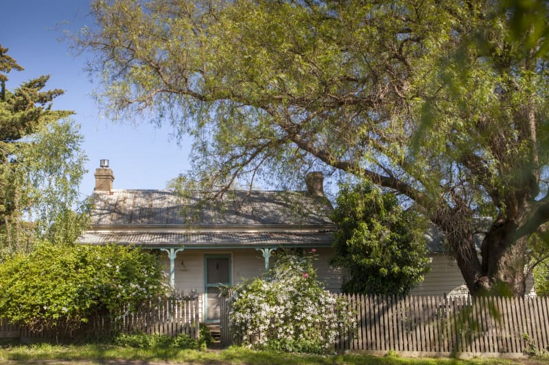 The miner's cottage sits underneath a large peppercorn tree.