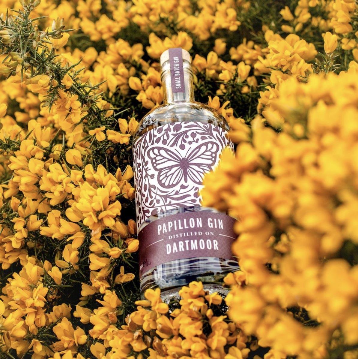 Papillon Gin, Dartmoor