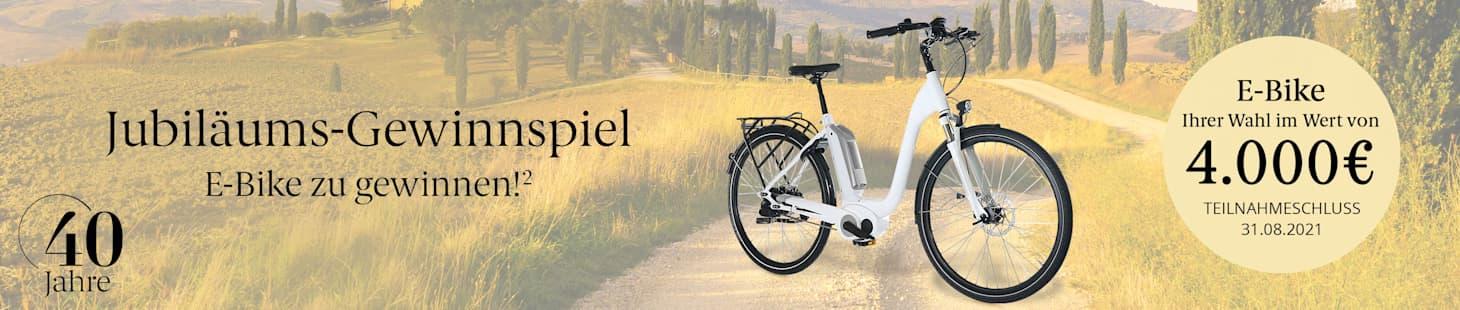 GWS_LP_HW21_E-Bike