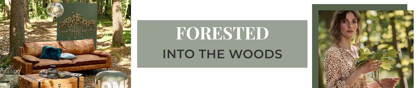 FORESTED  -  Jetzt entdecken