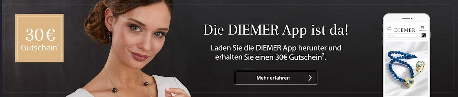 Diemer App