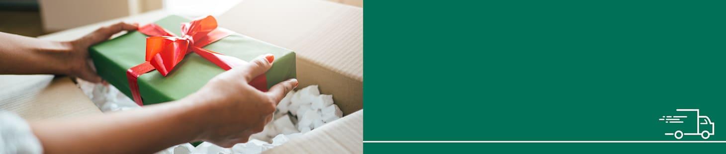 Gegarandeerde levering op uitelijk 24-12-2020 als u voor 17-12-2020, 18.00 uur bestelt