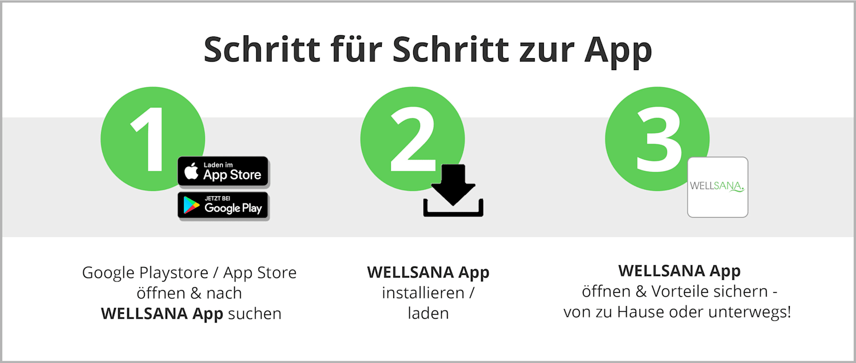 Wellsana App Installation
