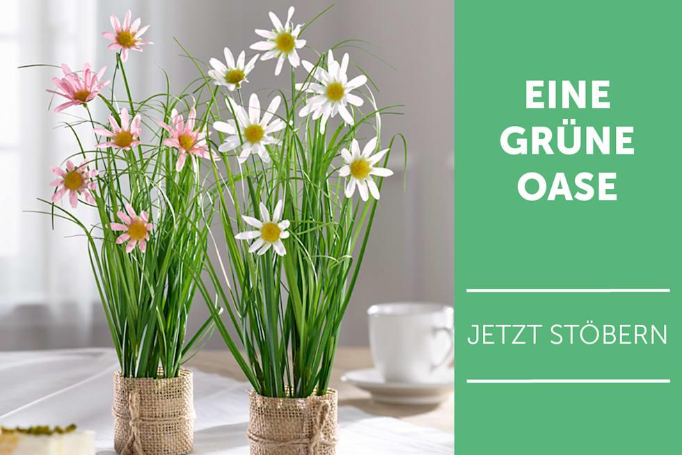 Eine grüne Oase - Kunstpflanzen entdecken
