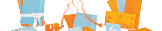 Translucent coloured envelopes, 62 x 98 translucent envelopes, 125 x 125 translucent envelopes, 160 x 160 translucent envelopes, 220 x 220 translucent envelopes, 114 x 162 mm (C6) translucent envelope, 162 x 229 mm (C5) translucent envelopes, 324 x 229 mm (C4) translucent envelopes, 110 x 220 mm (DL) translucent envelopes