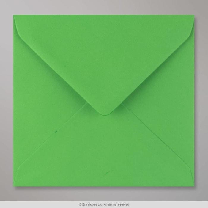 155x155 mm Busta Verde Felce